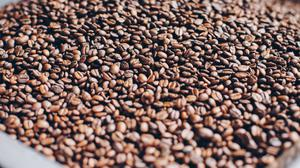 Roasted Coffee Beans Free Download Wallpaper HD