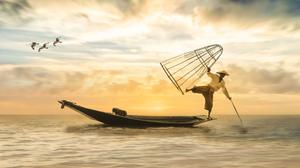 Fisherman Fishing Fish From Boat In Sunset Download Free Image
